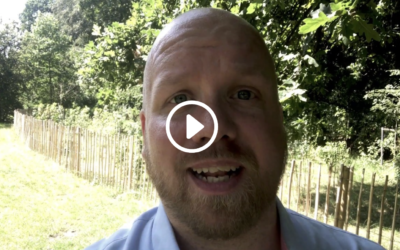 Feedback-modellen: 4 trin til motiverede medarbejdere og kollegaer